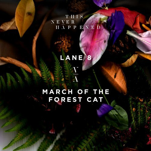 MIDI of Lane 8 - March of the Forest Cat