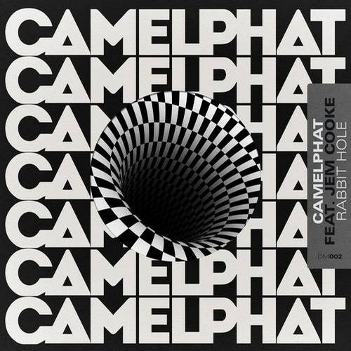 CamelPhat - Rabbit Hole (feat. Jem Cooke) MIDI