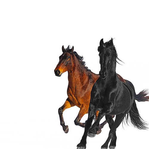 Lil Nas X ft. Billy Ray Cyrus - Old Town Road (Remix) MIDI
